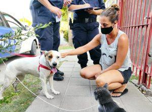 Rescate animal en Bahía Blanca